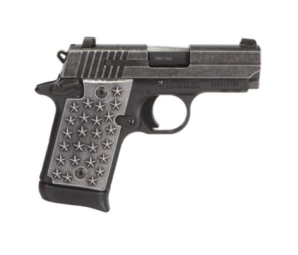 P938 We The People
